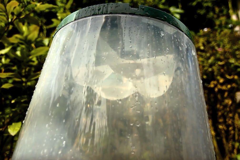 klosz-do-przyspieszonej-uprawy-roslin-system-nawadniania-kapilarnego.jpg